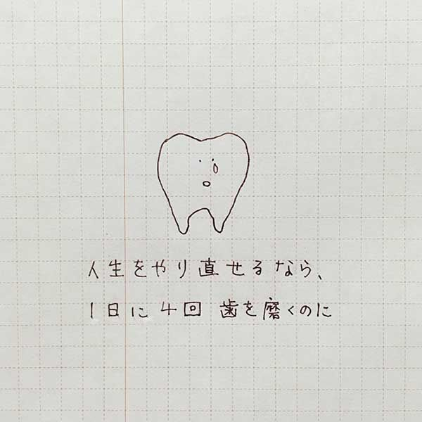 f:id:mount-hayashi:20170111214353j:plain