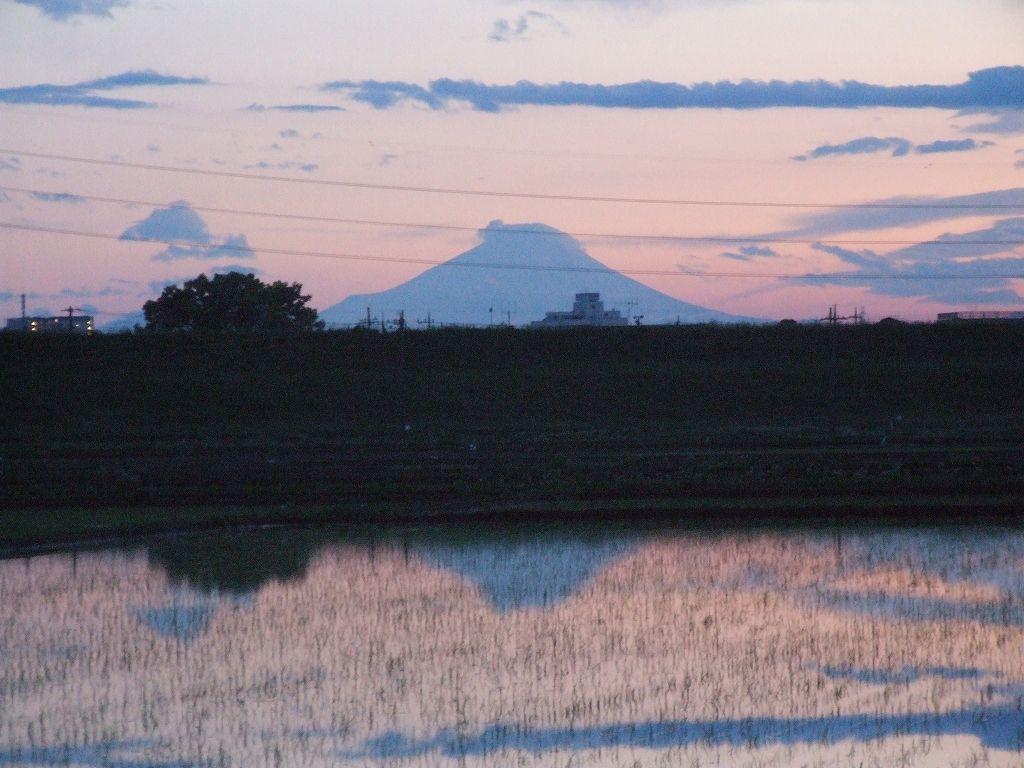 富士山・・・:荒川河川敷で(埼玉県志木市)