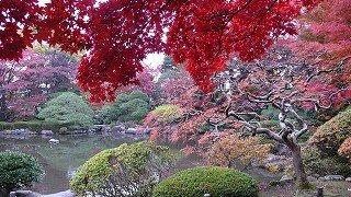 s-もみじ公園の紅葉
