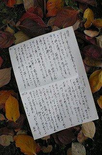 秋の便り(山形の父から)