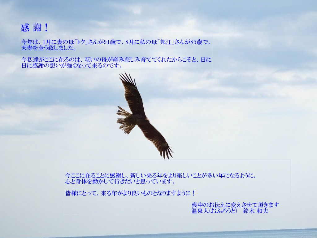 飛翔(喪中のお伝え)