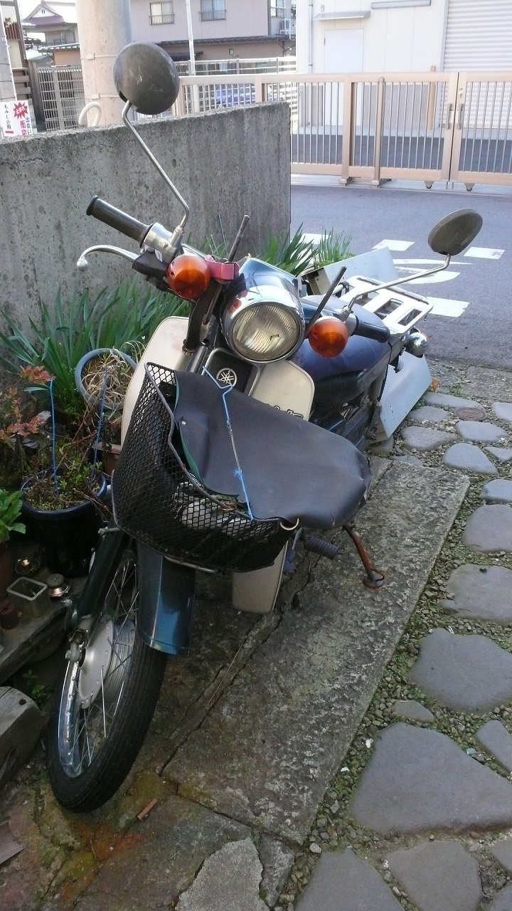 s-P1630559
