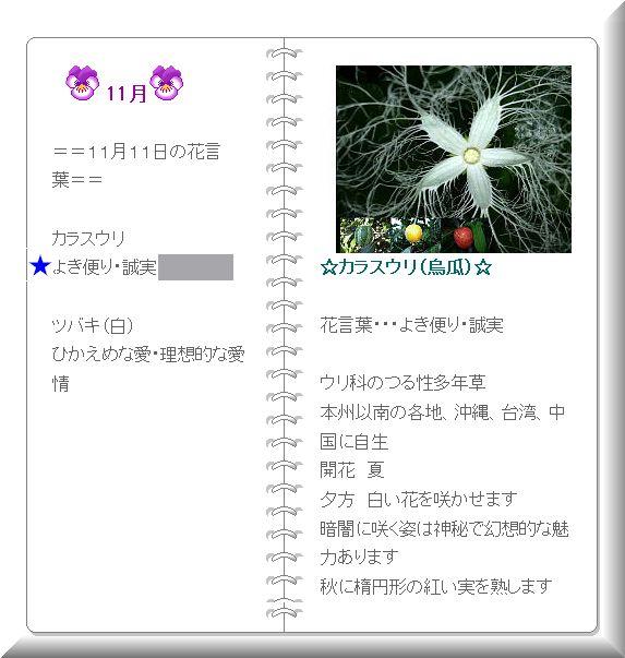カラスウリの花言葉2