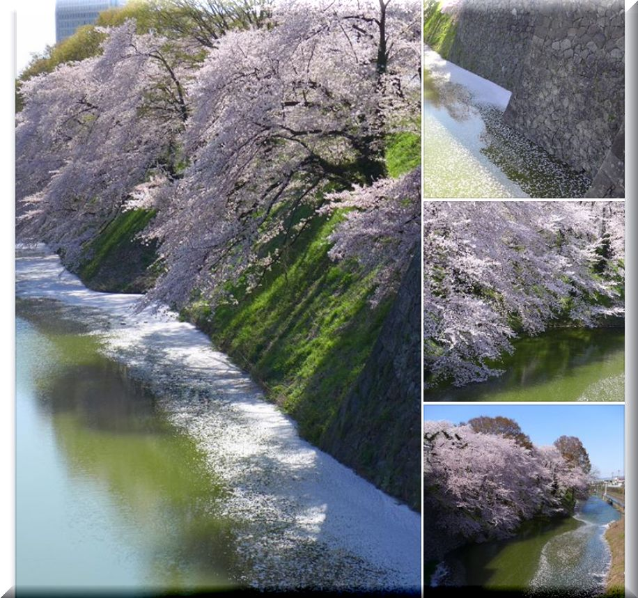 FB:桜の山形城(2019.(令和元年)4.22)