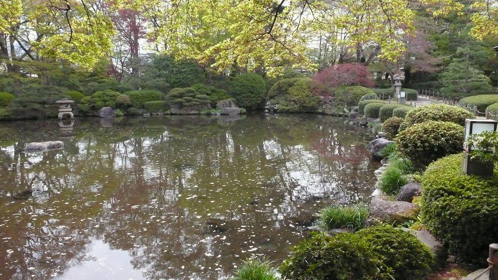 春の「もみじ公園」