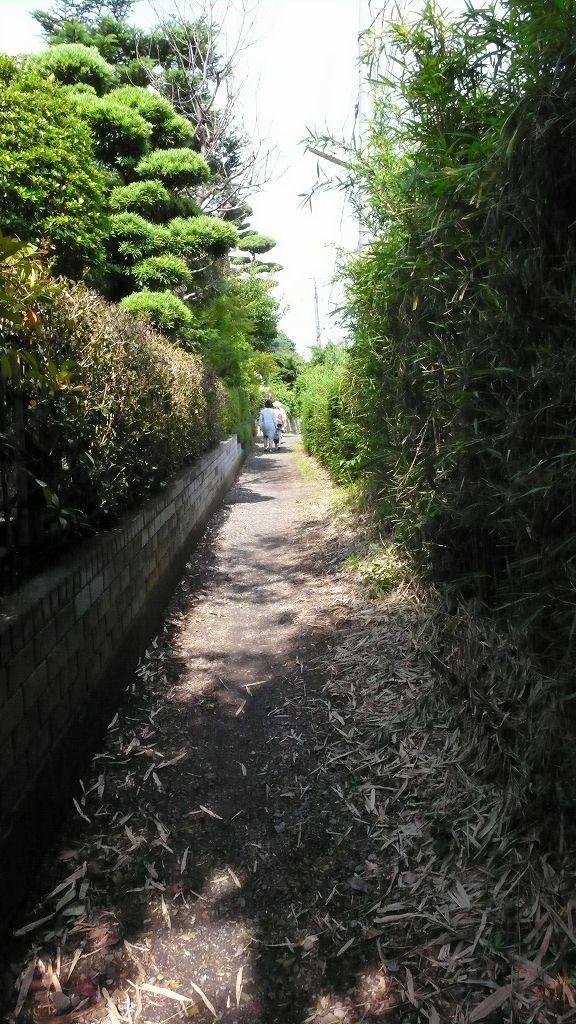 川越の史跡巡り(とうりゃんせの小道)