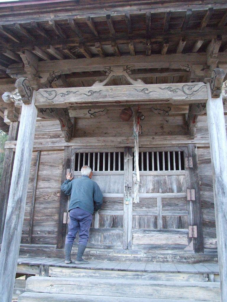 神代カヤ(山形県大江町)