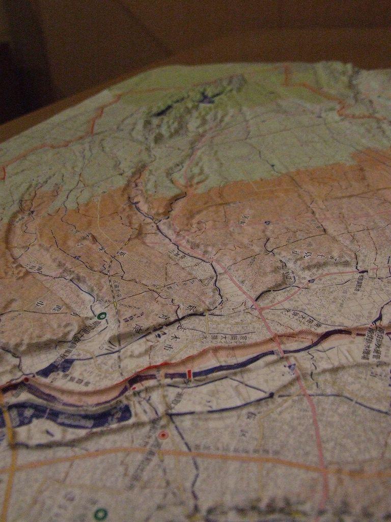 地元を鳥瞰する(新河岸川流域立体地図)