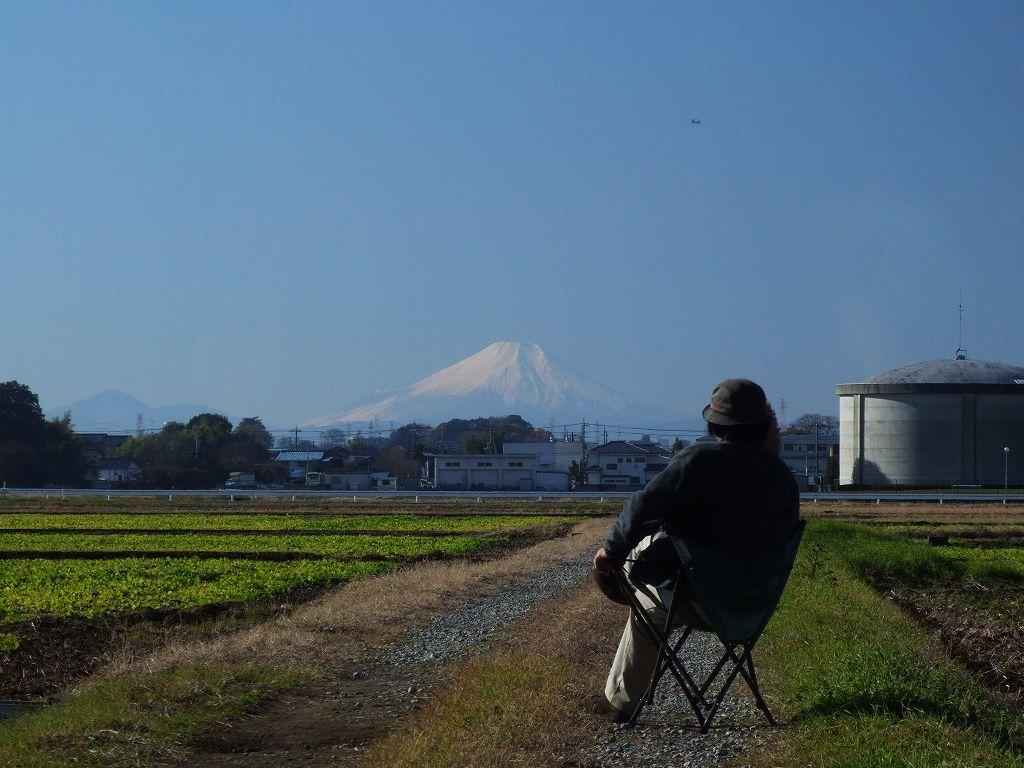 富士山を臨む(埼玉・富士見市で)