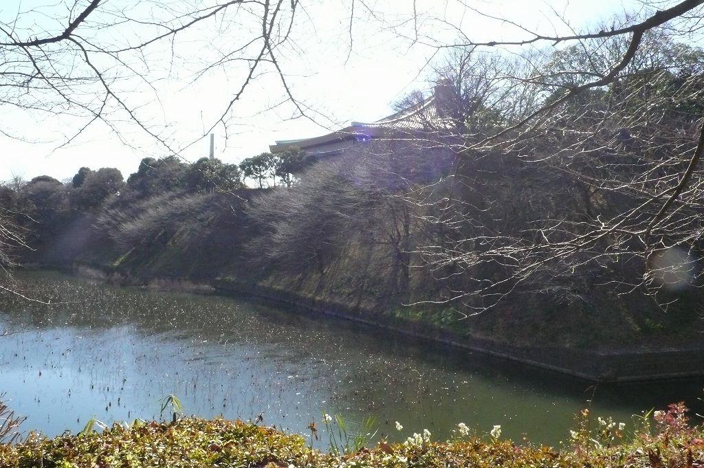 昭和館前の堀から武道館を臨む