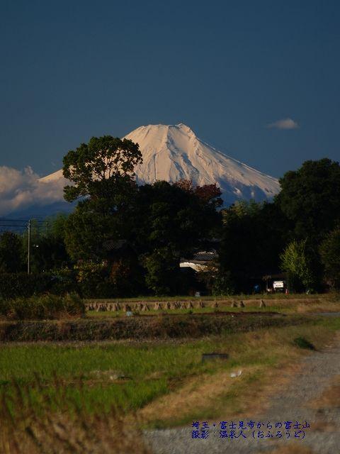 埼玉・富士見市からの富士山