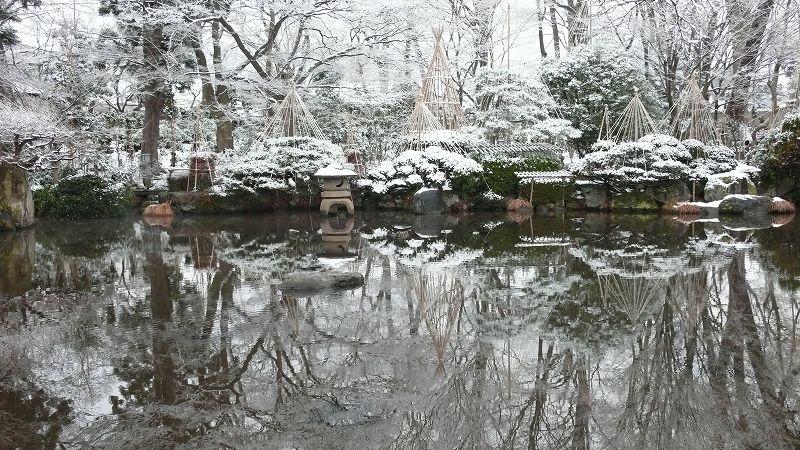 新雪(山形・もみじ公園)