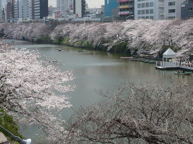 飯田橋の魅力!