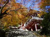 拝殿と楼門
