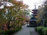 本長谷寺と五重塔