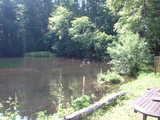 小さな国の池