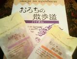 sakura_tour_4h