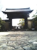 sakura_tour_7f