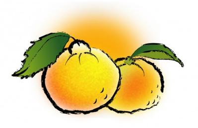 柚子イラスト