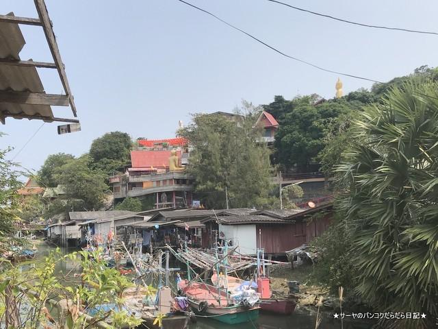 カオタオ洞窟寺院 watthamkhaotao 亀 ホアヒン (2)