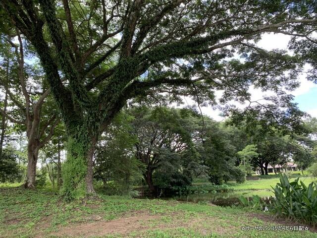 サンティブリー  Santiburi Country Club Chiangrai (19)