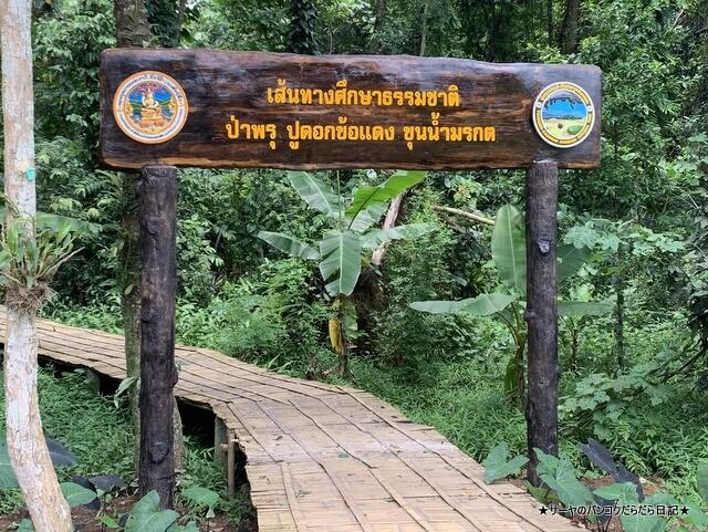 タムルアンクンナムナン非森林公園 Khunnam Nangnon (10)