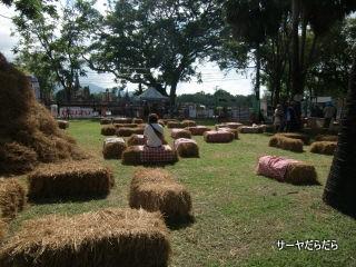 20110508 sukhothai marathon 4
