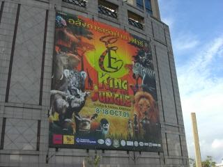 20091016 KING JUNGLE 1