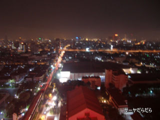 20110405 roof 4