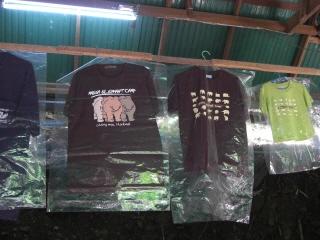 20081009 elephant camp 5