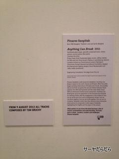 MUSEUM CONTENPORARY ART 5