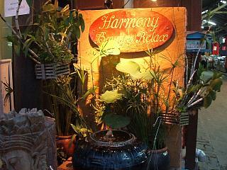 0816 Harmony Beauty & Relax 2