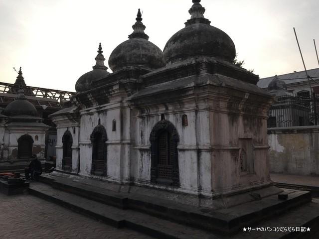 パシュパティナート Pashupatinath 世界遺産 (17)