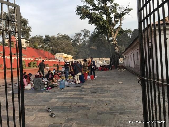 パシュパティナート Pashupatinath 世界遺産 (10)