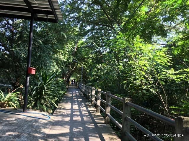 バンコク 肺 サイクリング Bangkok Tree House (2)