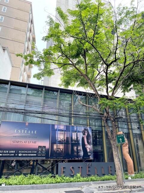 東京建物&Raimon Land コンドミニアム ESTELLE (1)