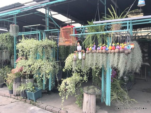 園芸市場 ナコンナヨック Klong 15 Tree Market Rangsit (3)