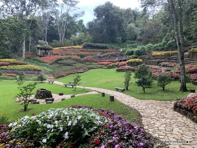 メーファールアン植物園 Mae-Fah-Luang-Arboretum (12)