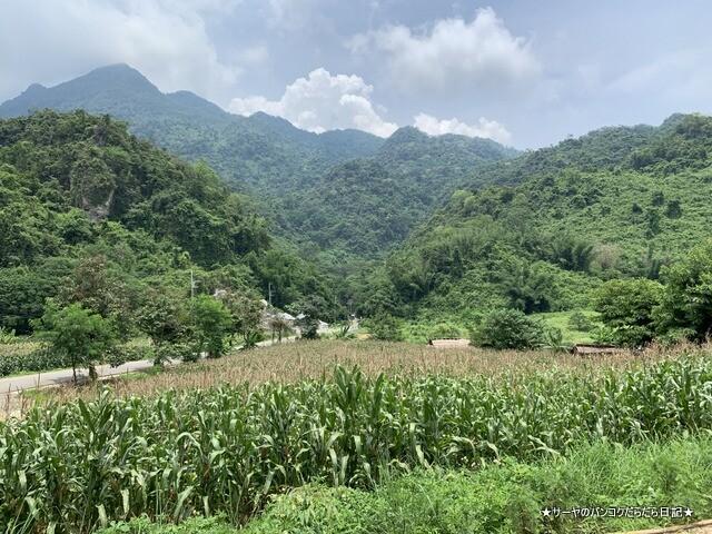 タムルアン洞窟 チェンライ CAVE (21)