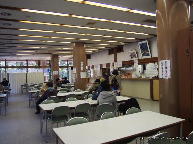 鎌倉 tsuruoka hachimangu 鶴岡八幡宮