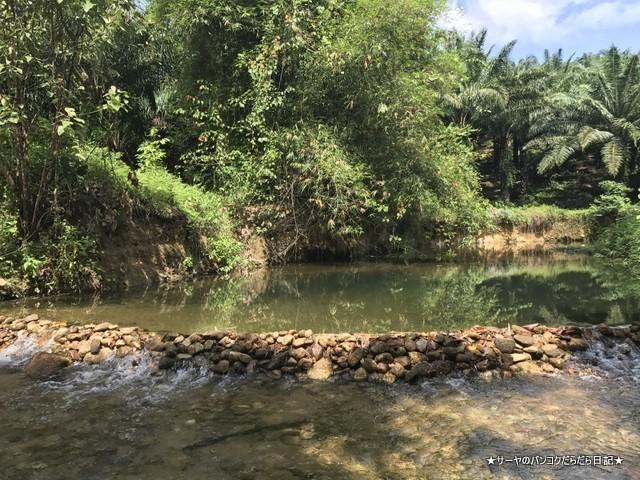バギー ジャングルツアー カオラック (1)