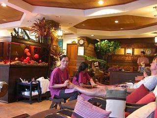 20080625 elephant massage 2