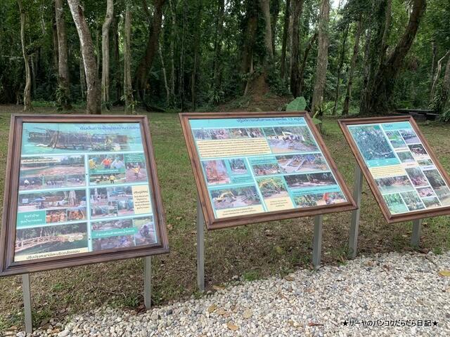 タムルアンクンナムナン非森林公園 Khunnam Nangnon (4)