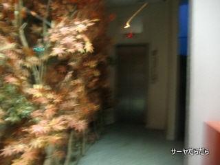 20110224 host club 1