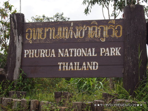 プールア 国立 公園 ルーイ県