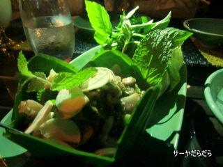 20120208 balee laos 3