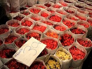 0528 パーククロン花市場 3