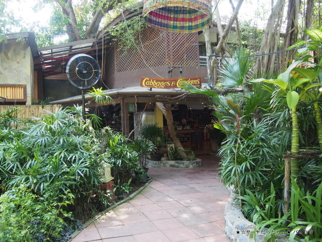 Cabbages & Condoms Restaurant at ジョムティエンビーチ パタヤ