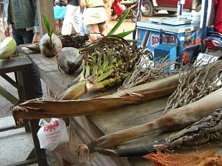 20080503 coconuts farm 1