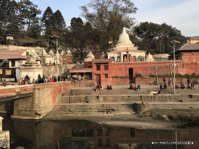 パシュパティナート Pashupatinath 世界遺産 (18)